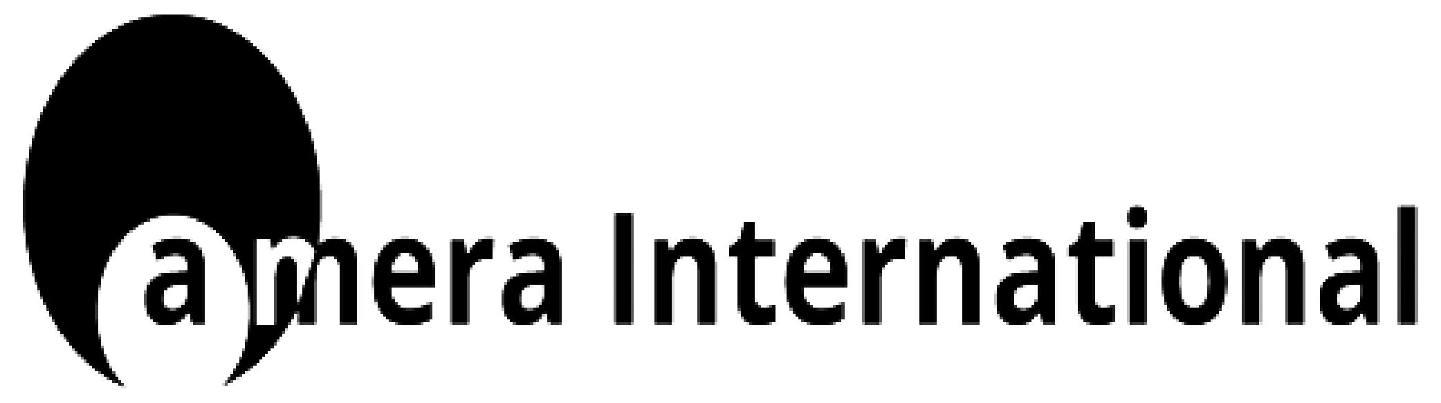 Amera International Logo Larger